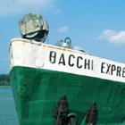 BacchiLogo.png